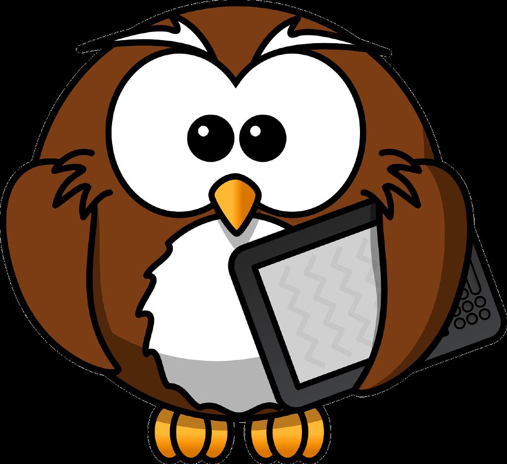 remote owl