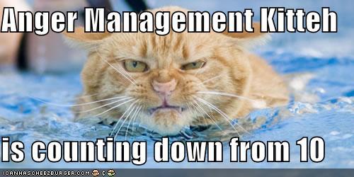 anger-management-kitteh.jpg