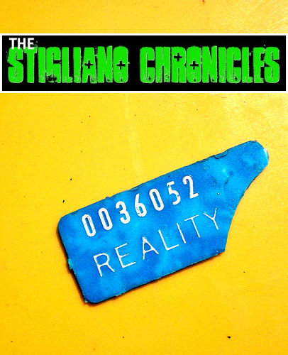 The Reality Of Realty - The Stigliano Chronicles