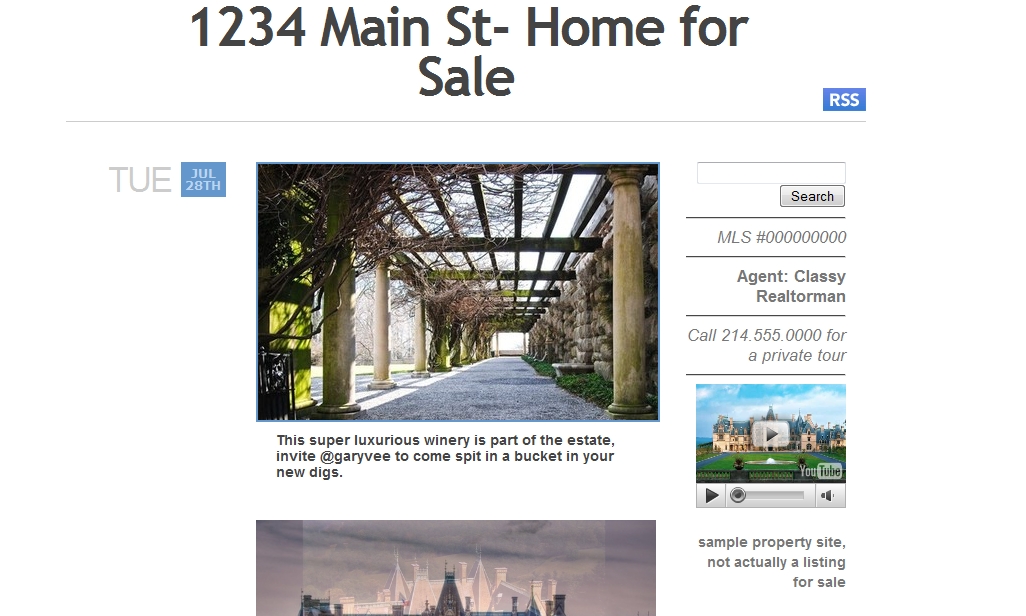 theme 1 Using Tumblr.com as a Single Property Website