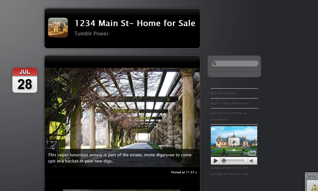 theme 2 Using Tumblr.com as a Single Property Website