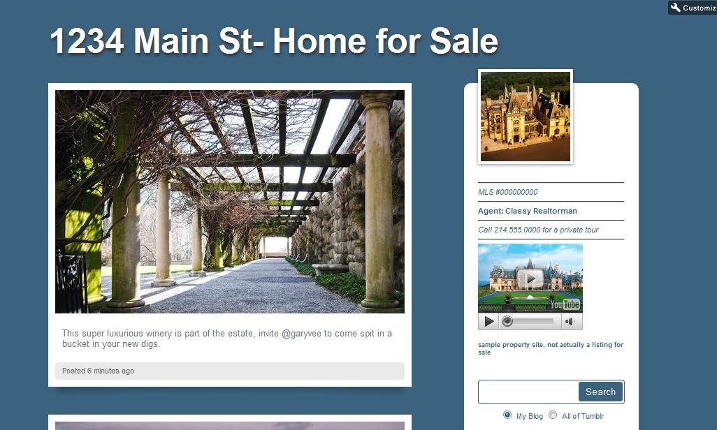 theme 5 Using Tumblr.com as a Single Property Website