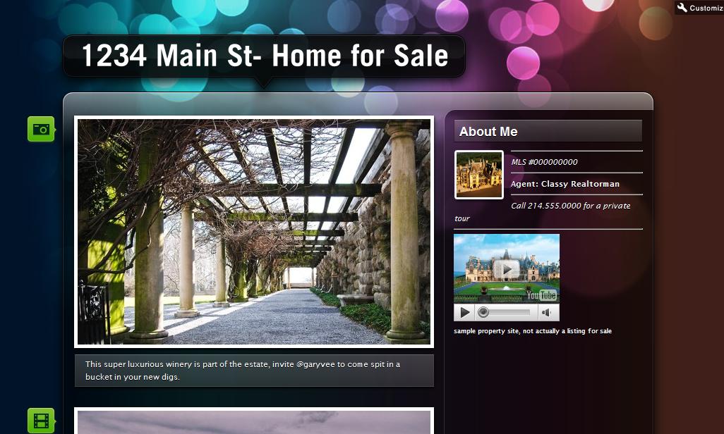 theme 6 Using Tumblr.com as a Single Property Website
