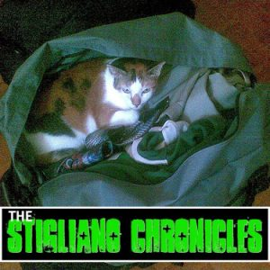 Pack Up The Cats - The Stigliano Chronicles
