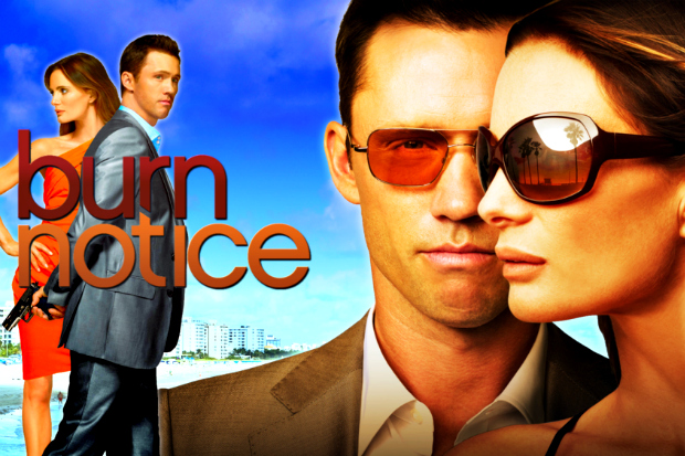 burn notice Burn Notice, business allies & ego boundaries   web visibility is all about ego