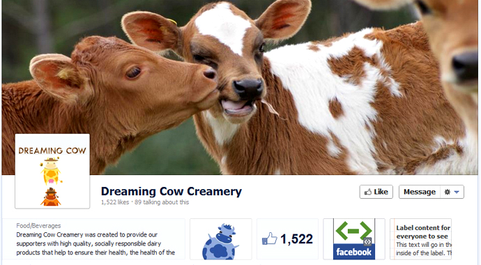 dreaming cow 40 brands using Timeline Cover Photos on Facebook Pages