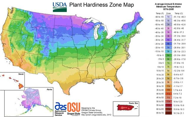 plant hardiness map USDA updates planting zone map   get up to speed for curb appeal