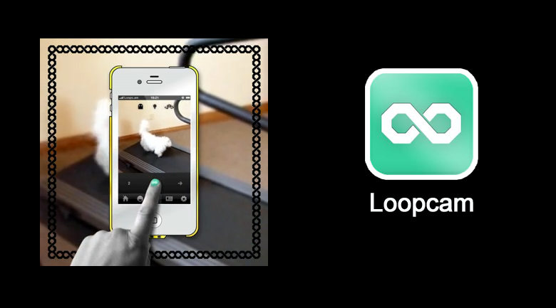 loopcam animated gifs
