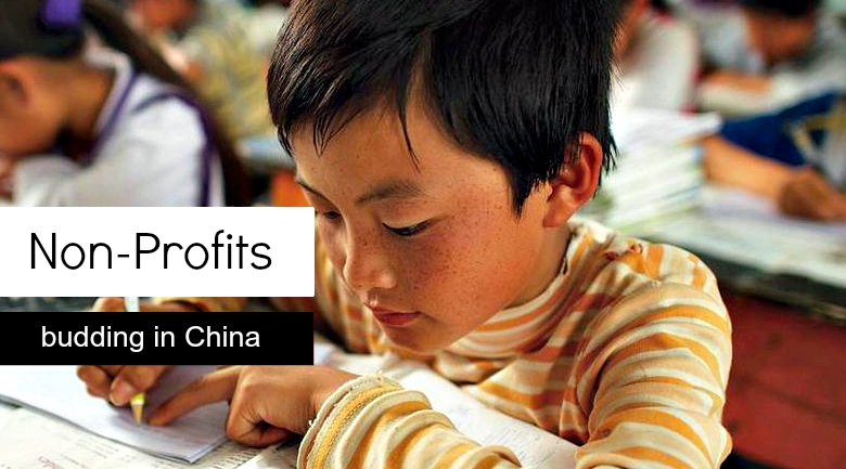 china NPOs How an emerging non profit sector is giving China a social makeover