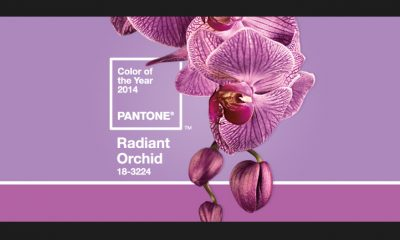 pantone color of the year 2014 radiant orchid