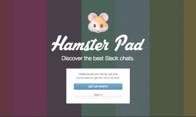 hamster pad