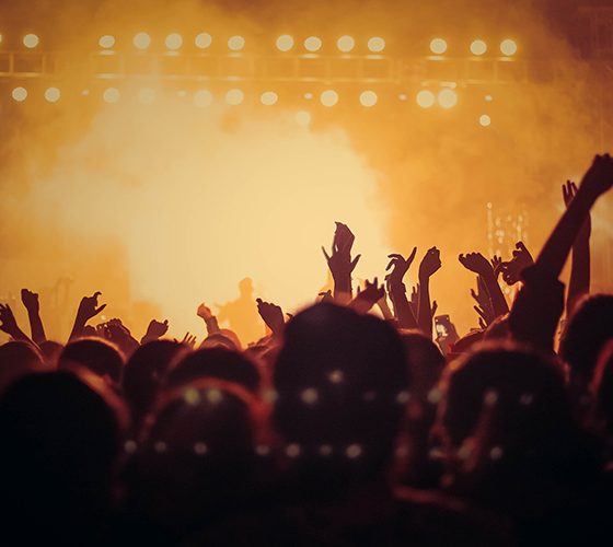 Music concert crowd no longer safe but can be experienced virtually.